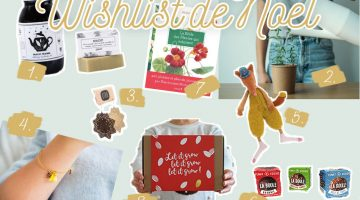 Wishlist de Noël 2017 par La Box à Planter