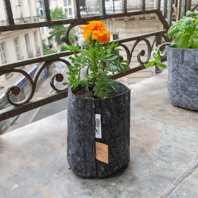 Mini pot gris géotextile jardinage au balcon La Box à Planter