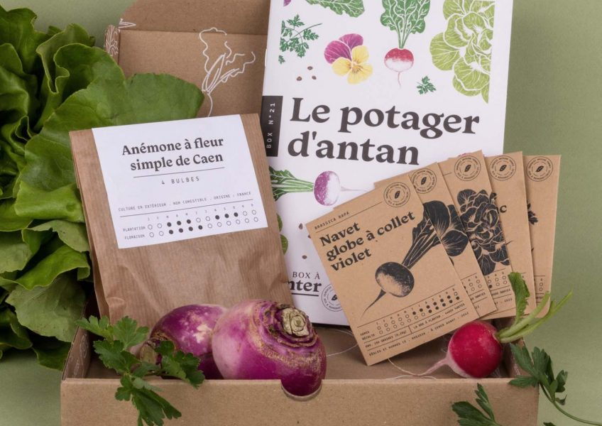 La_Box_à_Planter_Le_Potager_dantan-1