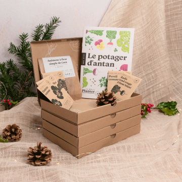Pack 4 box jardinage